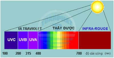 UV day-quang-pho