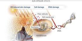 UV Factors-that-influence-skin-by-sun