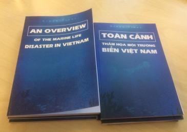 toan-canh-bien-viet-nam
