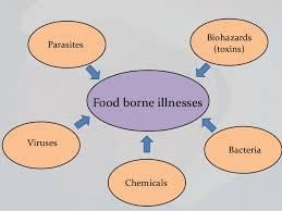 food-borne-diseases
