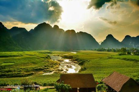 KONG tan-hoa-village-oxalis-hq