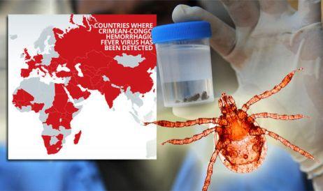 Crimean-Congo-haemorrhagic-fever 1