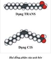TRANS FAT (2) - Copy