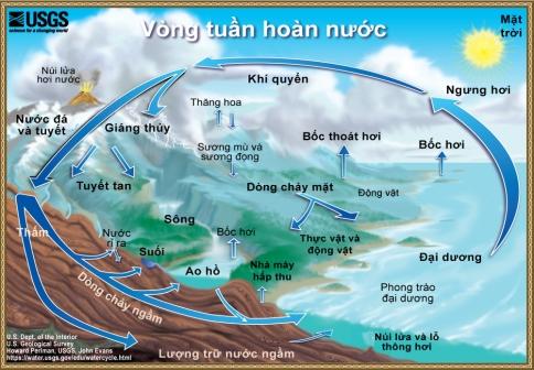 watercycle-vietnamese-1000.jpg